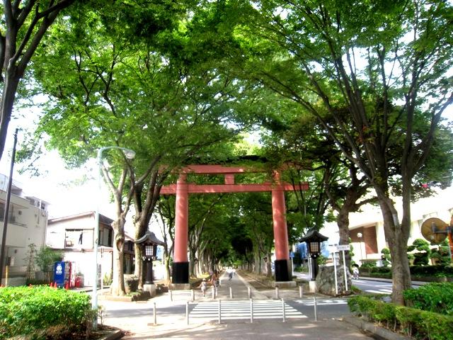 hikawasando torii1