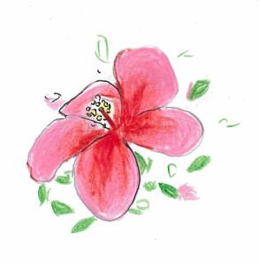 mokuji_acore_flower