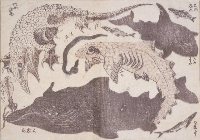 鯨・鮫ほか1