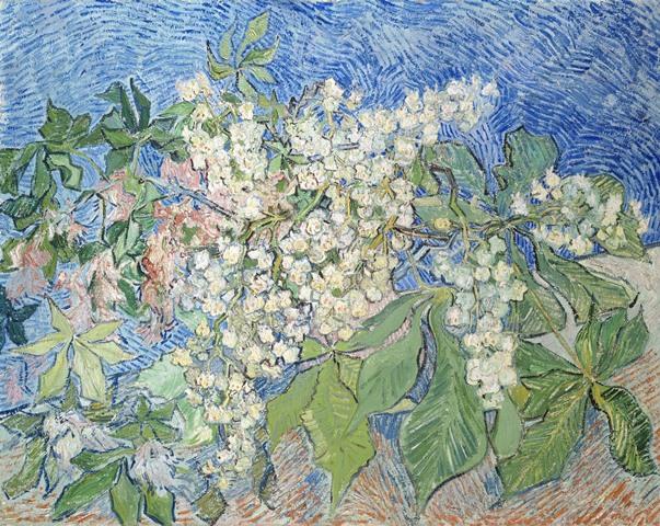 10.フィンセント・ファン・ゴッホ《花咲くマロニエの枝》1