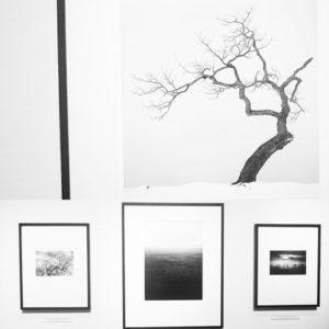 マイケルケンナ 東京都写真美術館