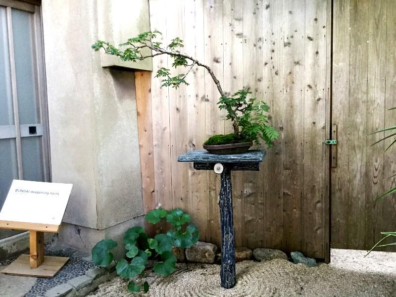 平尾成志 瀬ト内工芸ズ 瀬戸内国際芸術祭 2019 盆栽