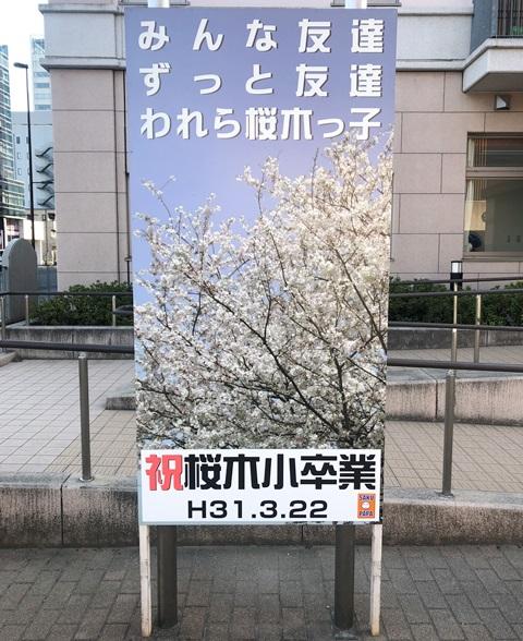 さいたま市 教育委員会感謝状贈呈式 桜木パパ