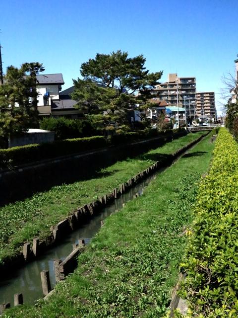 miyazawa_syouji_kirisikikawa1