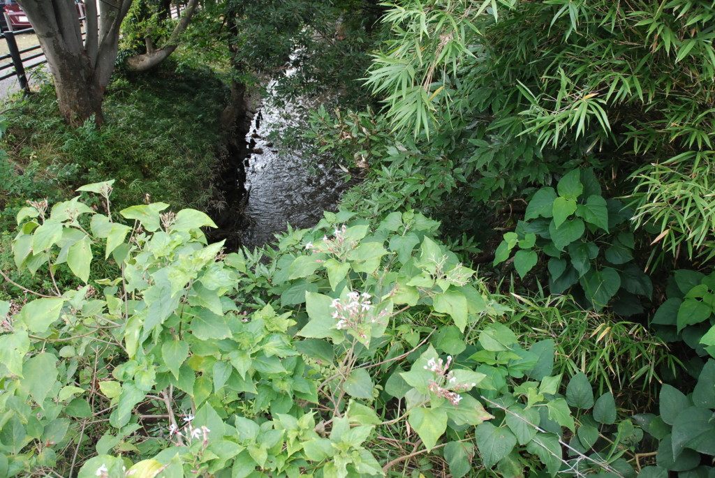 見沼通船堀 閘門開閉実演 パナマ運河 さいたま市 見沼 こうもんかいへい