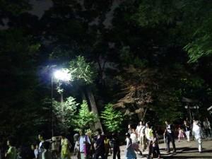 氷川ほたる観賞会・風景11