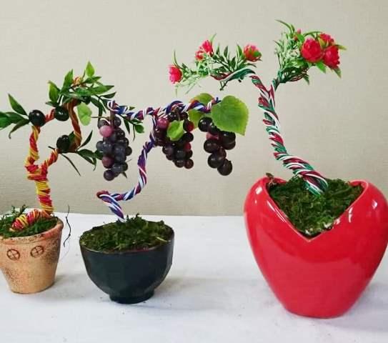 新井正男 大宮盆栽 枯れない盆栽 世界盆栽大会
