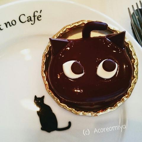 黒猫カフェ シャノワール 大阪 ケーキ