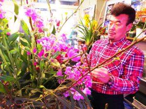 石井まさるのお花やさん 大宮盆栽村 アコレおおみや
