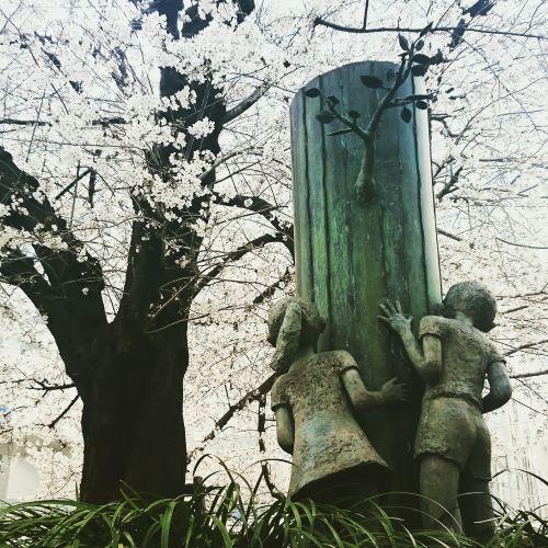鐘塚公園 桜 大宮 さいたま