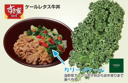 ケールレタス牛丼 すき家 トキタ